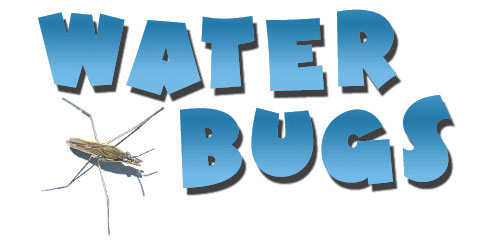 Water Filteration Systems and Pest Control